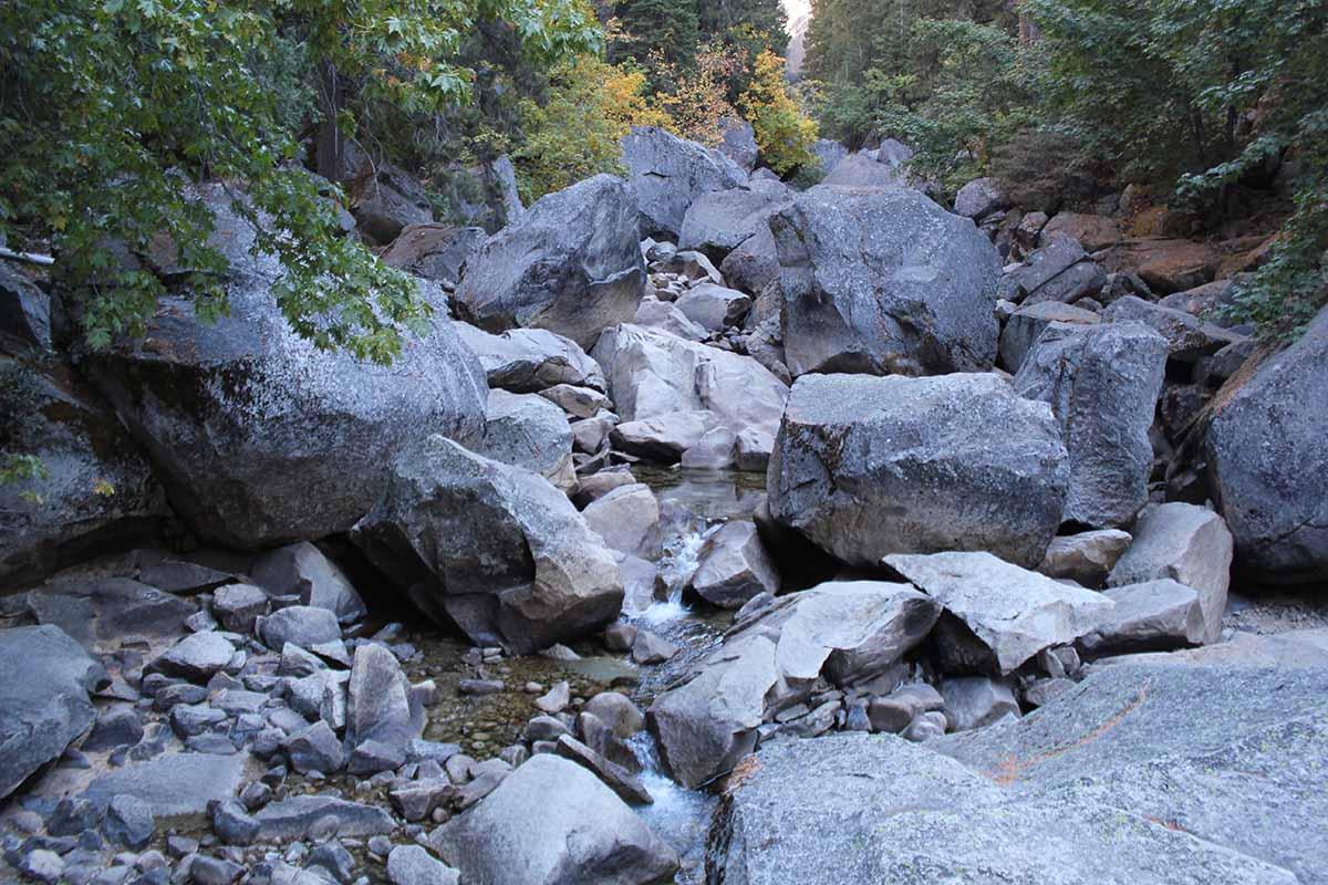 Bärenangst im Yosemite NP