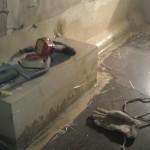 neuer Fußboden laminiert